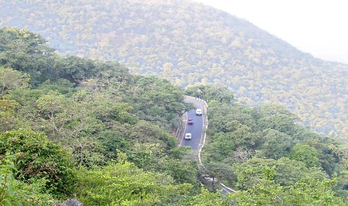 nashik-to-saputara-spotvis-saputara-forest